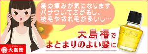 大島椿 ツバキ油